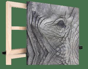 foto lienzo por navidad ejemplo elefante 4